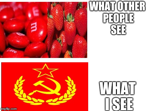 The color red | WHAT OTHER PEOPLE SEE WHAT I SEE | image tagged in red,communism,strawberries  mms | made w/ Imgflip meme maker