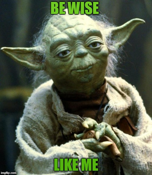 Star Wars Yoda Meme | BE WISE LIKE ME | image tagged in memes,star wars yoda | made w/ Imgflip meme maker