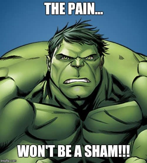 THE PAIN... WON'T BE A SHAM!!! | made w/ Imgflip meme maker