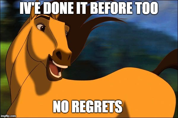 Spirit | IV'E DONE IT BEFORE TOO NO REGRETS | image tagged in spirit | made w/ Imgflip meme maker