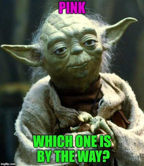 Star Wars Yoda Meme | PINK WHICH ONE IS BY THE WAY? | image tagged in memes,star wars yoda | made w/ Imgflip meme maker