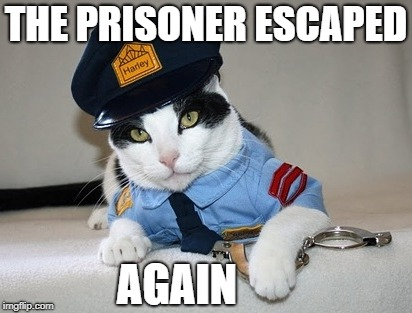 THE PRISONER ESCAPED AGAIN | made w/ Imgflip meme maker