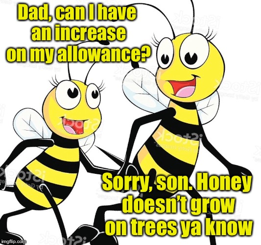 Bad Bee Pun | Dad, can I have an increase on my allowance? Sorry, son. Honey doesn't grow on trees ya know | image tagged in memes,bees,honey,money,bad pun | made w/ Imgflip meme maker