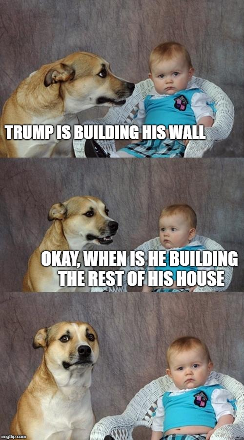 Dad Joke Dog Meme | TRUMP IS BUILDING HIS WALL OKAY, WHEN IS HE BUILDING THE REST OF HIS HOUSE | image tagged in memes,dad joke dog | made w/ Imgflip meme maker
