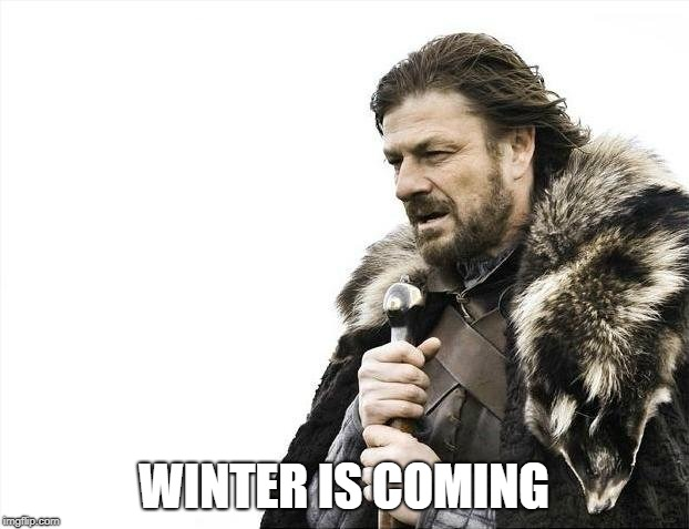 Brace Yourselves X is Coming Meme | WINTER IS COMING | image tagged in memes,brace yourselves x is coming | made w/ Imgflip meme maker