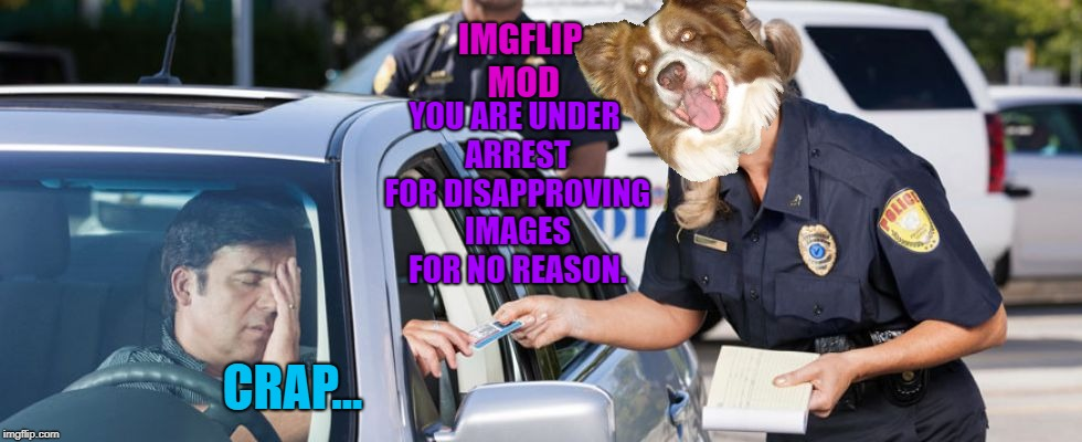 "No more games, imgflip mods. You have to approve my images when I say ""approve them"". 