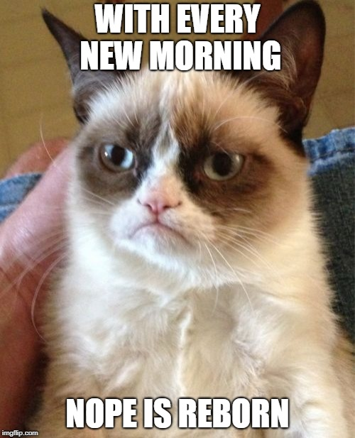 Grumpy Cat Meme | WITH EVERY NEW MORNING NOPE IS REBORN | image tagged in memes,grumpy cat | made w/ Imgflip meme maker