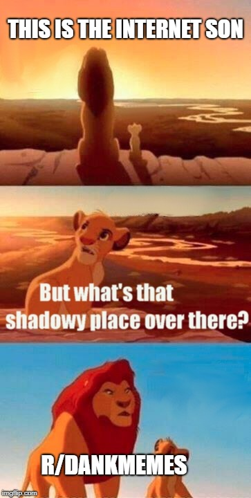 Simba Shadowy Place Meme | THIS IS THE INTERNET SON R/DANKMEMES | image tagged in memes,simba shadowy place | made w/ Imgflip meme maker