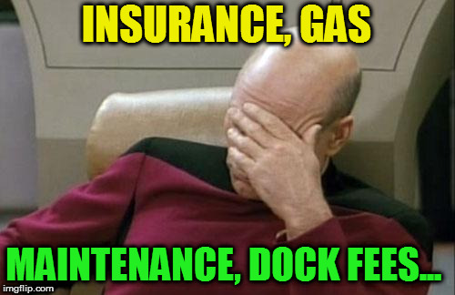 Captain Picard Facepalm Meme | INSURANCE, GAS MAINTENANCE, DOCK FEES... | image tagged in memes,captain picard facepalm | made w/ Imgflip meme maker