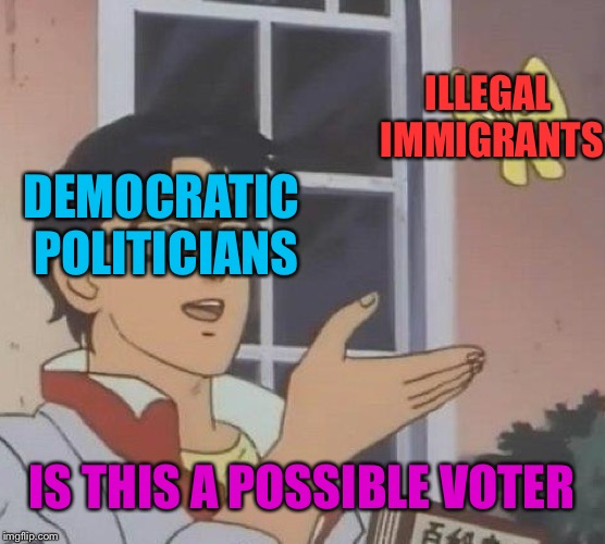 Is This A Pigeon Meme | DEMOCRATIC POLITICIANS ILLEGAL IMMIGRANTS IS THIS A POSSIBLE VOTER | image tagged in memes,is this a pigeon | made w/ Imgflip meme maker