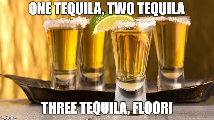 Tequila! | ONE TEQUILA, TWO TEQUILA THREE TEQUILA, FLOOR! | image tagged in tequila,drunk,shots,party | made w/ Imgflip meme maker