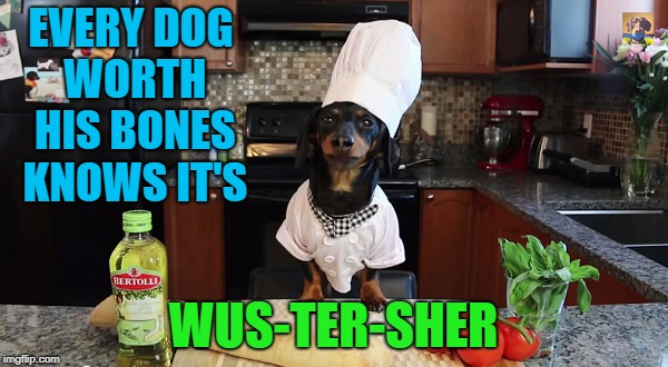 EVERY DOG WORTH HIS BONES KNOWS IT'S WUS-TER-SHER | made w/ Imgflip meme maker