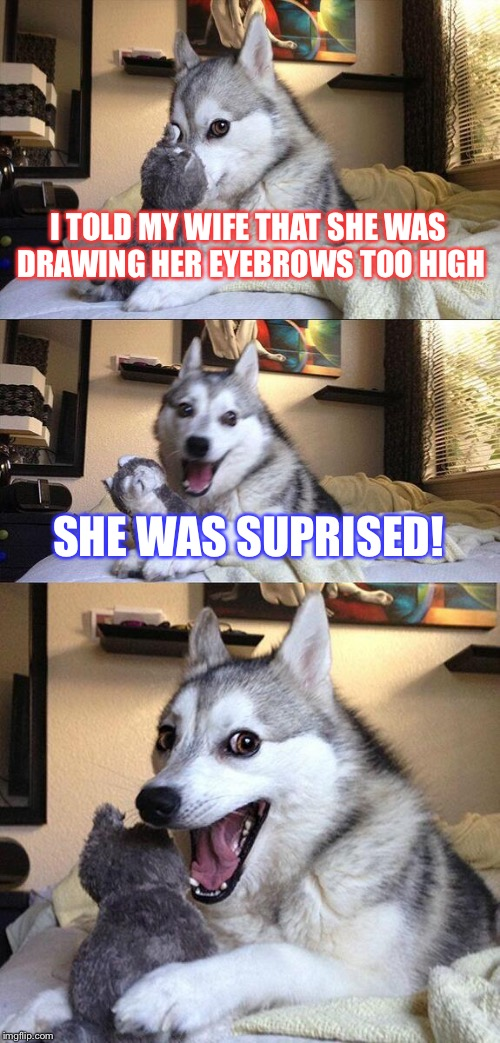 Husky wife problems | I TOLD MY WIFE THAT SHE WAS DRAWING HER EYEBROWS TOO HIGH SHE WAS SUPRISED! | image tagged in memes,bad pun dog,animals,comedy,meme | made w/ Imgflip meme maker