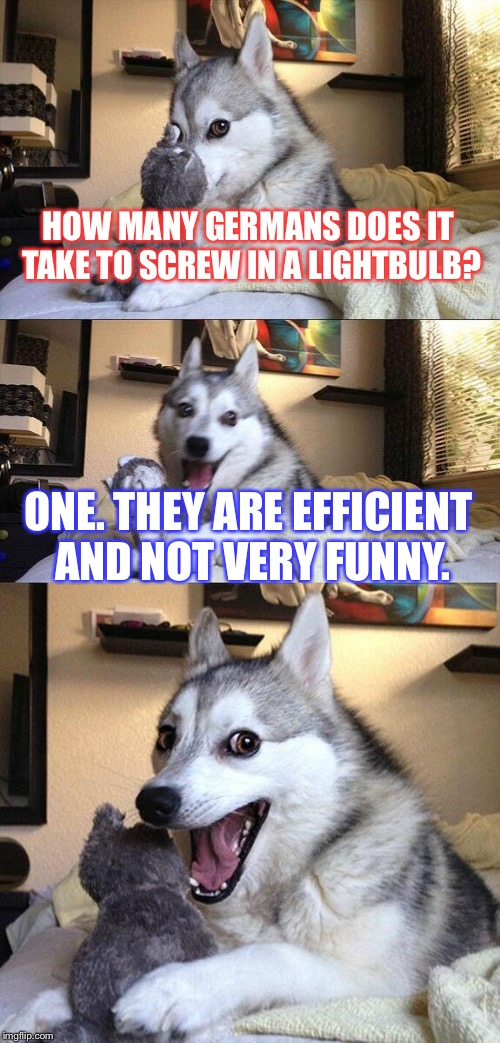Classic lightbulb joke with a twist. | HOW MANY GERMANS DOES IT TAKE TO SCREW IN A LIGHTBULB? ONE. THEY ARE EFFICIENT AND NOT VERY FUNNY. | image tagged in memes,bad pun dog,comedy,animals,meme | made w/ Imgflip meme maker