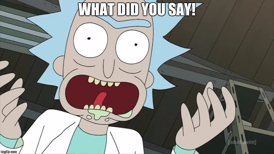 WHAT DID YOU SAY! | image tagged in rick | made w/ Imgflip meme maker