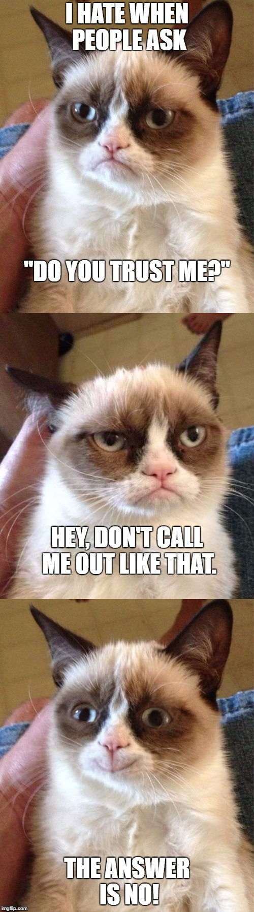 "Bad Pun Grumpy Cat |  I HATE WHEN PEOPLE ASK; ""DO YOU TRUST ME?""; HEY, DON'T CALL ME OUT LIKE THAT. THE ANSWER IS NO! 