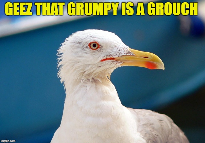 GEEZ THAT GRUMPY IS A GROUCH | made w/ Imgflip meme maker