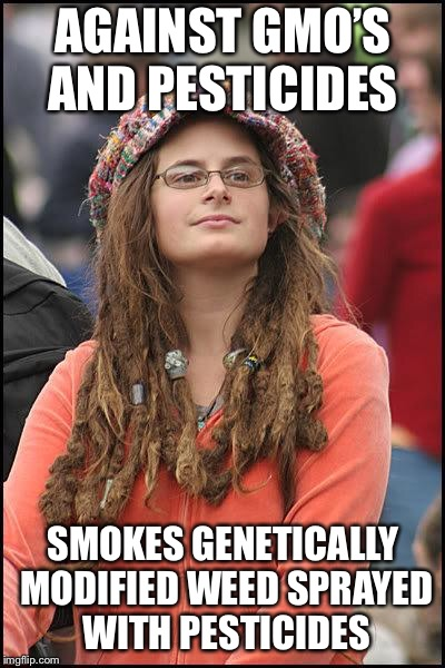 Hippie | AGAINST GMO'S AND PESTICIDES SMOKES GENETICALLY MODIFIED WEED SPRAYED WITH PESTICIDES | image tagged in hippie | made w/ Imgflip meme maker