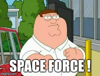 Patrick Swayze was gone too soon.... | SPACE FORCE ! | image tagged in roadhouse peter griffin,memes,space force,donald trump | made w/ Imgflip meme maker