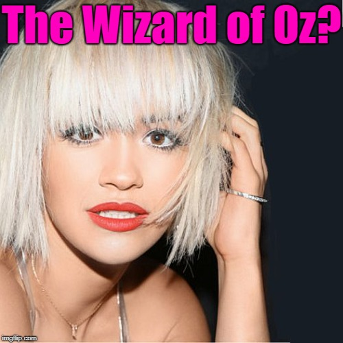ditz | The Wizard of Oz? | image tagged in ditz | made w/ Imgflip meme maker