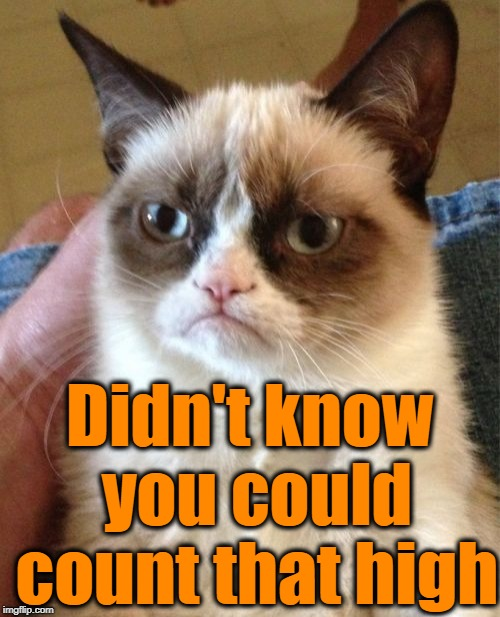 Grumpy Cat Meme | Didn't know you could count that high | image tagged in memes,grumpy cat | made w/ Imgflip meme maker