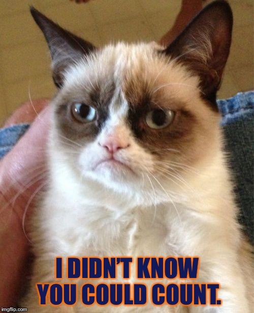 Grumpy Cat Meme | I DIDN'T KNOW YOU COULD COUNT. | image tagged in memes,grumpy cat | made w/ Imgflip meme maker