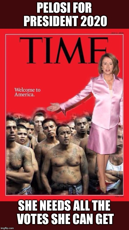 Mass Immigtation = More Democrats  | PELOSI FOR PRESIDENT 2020 SHE NEEDS ALL THE VOTES SHE CAN GET | image tagged in maga,trump 2020,nancy pelosi,stupid liberals,illegal immigration | made w/ Imgflip meme maker