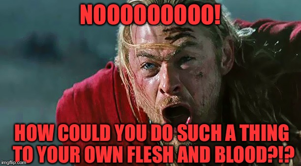 Thor No! | NOOOOOOOOO! HOW COULD YOU DO SUCH A THING TO YOUR OWN FLESH AND BLOOD?!? | image tagged in thor no | made w/ Imgflip meme maker