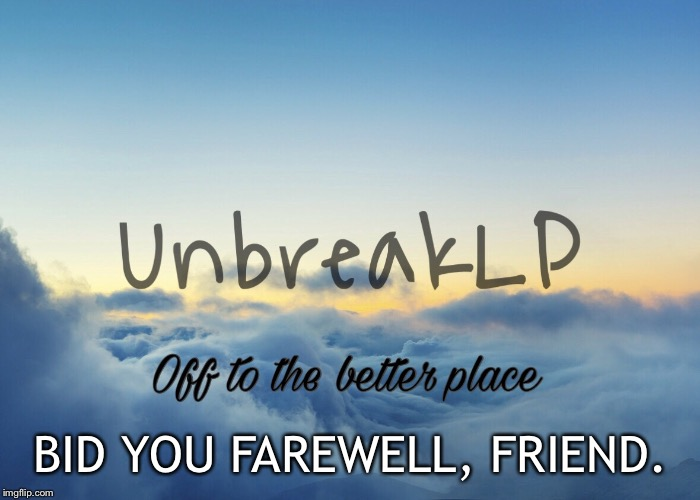 We all bid you farwell | BID YOU FAREWELL, FRIEND. | image tagged in unbreaklp,a better place,memes,say hi to god for me | made w/ Imgflip meme maker