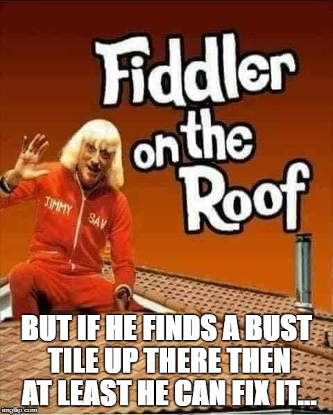 BUT IF HE FINDS A BUST TILE UP THERE THEN AT LEAST HE CAN FIX IT... | image tagged in tv show | made w/ Imgflip meme maker