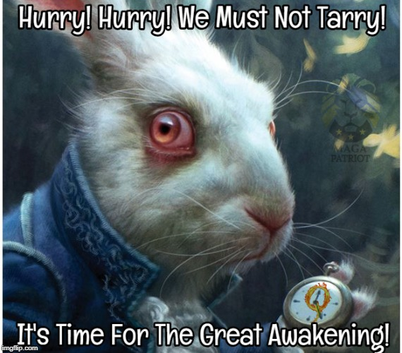 Follow The White Rabbit #QAnon #TheGreatAwakening | image tagged in alice in wonderland,dank memes,political meme,maga | made w/ Imgflip meme maker