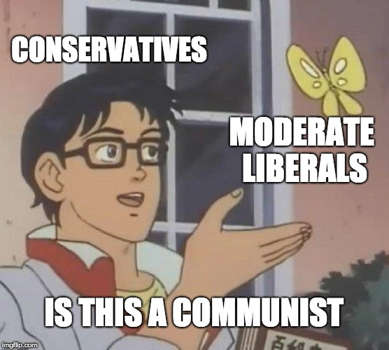 Is This A Pigeon |  CONSERVATIVES; MODERATE LIBERALS; IS THIS A COMMUNIST | image tagged in memes,is this a pigeon | made w/ Imgflip meme maker