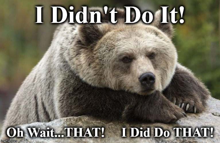 I Didn't Do It! Oh Wait...THAT!     I Did Do THAT! | image tagged in bb1 | made w/ Imgflip meme maker