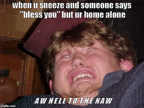 "WTF Meme | when u sneeze and someone says ""bless you"" but ur home alone A W  H E L L  T O  T H E  N A W 