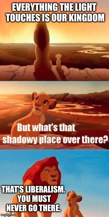 Simba Shadowy Place Meme | EVERYTHING THE LIGHT TOUCHES IS OUR KINGDOM THAT'S LIBERALISM. YOU MUST NEVER GO THERE. | image tagged in memes,simba shadowy place | made w/ Imgflip meme maker