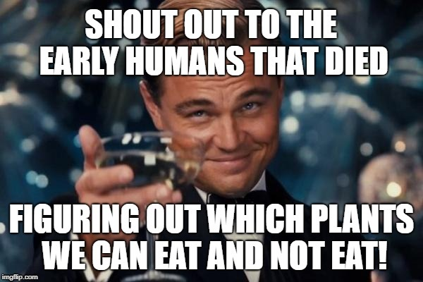 Leonardo DiCaprio: Shout Out | image tagged in dead people,poison,early humans,shout out,leonardo dicaprio | made w/ Imgflip meme maker