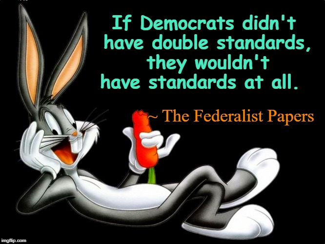Democrats & Double Standards | If Democrats didn't have double standards, they wouldn't have standards at all. ~ The Federalist Papers | image tagged in democrats,double standards | made w/ Imgflip meme maker