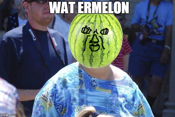 Wat ermelon | WAT ERMELON | image tagged in wat lady,watermelon,drawing | made w/ Imgflip meme maker