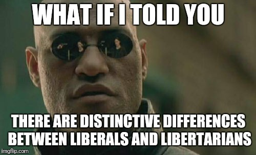 Matrix Morpheus Meme | WHAT IF I TOLD YOU THERE ARE DISTINCTIVE DIFFERENCES BETWEEN LIBERALS AND LIBERTARIANS | image tagged in memes,matrix morpheus | made w/ Imgflip meme maker