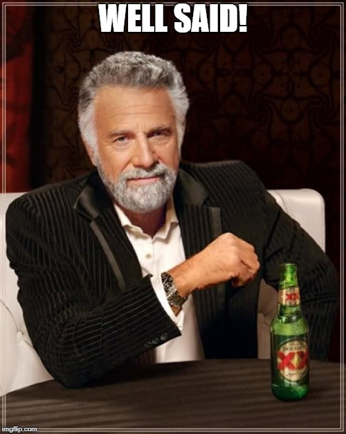 The Most Interesting Man In The World Meme | WELL SAID! | image tagged in memes,the most interesting man in the world | made w/ Imgflip meme maker