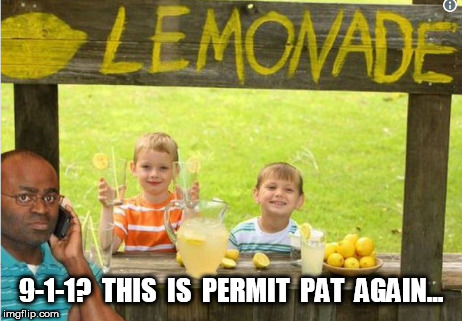permit pat | 9-1-1?  THIS  IS  PERMIT  PAT  AGAIN... | image tagged in permit patty,permit,racist | made w/ Imgflip meme maker
