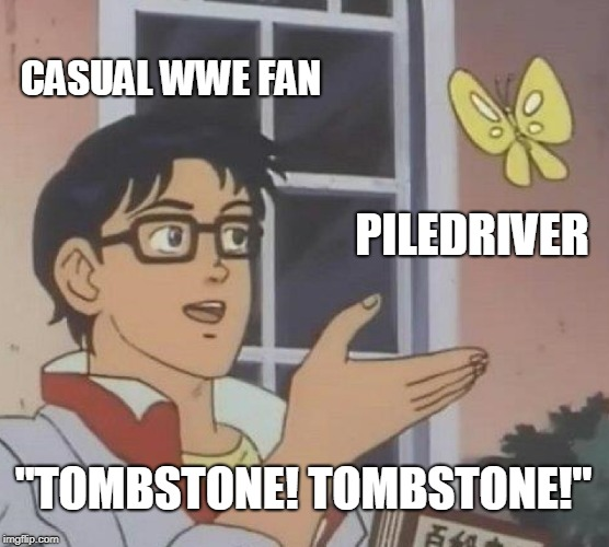 "IT'S THE UNDERTAKER! | CASUAL WWE FAN PILEDRIVER ""TOMBSTONE! TOMBSTONE!"" 