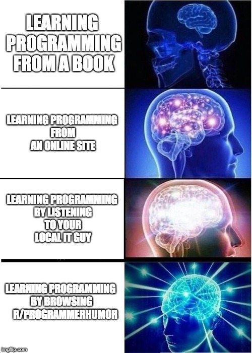 Expanding Brain Meme | LEARNING PROGRAMMING FROM A BOOK LEARNING PROGRAMMING FROM AN ONLINE SITE LEARNING PROGRAMMING BY LISTENING TO YOUR LOCAL IT GUY LEARNING PR | image tagged in memes,expanding brain | made w/ Imgflip meme maker