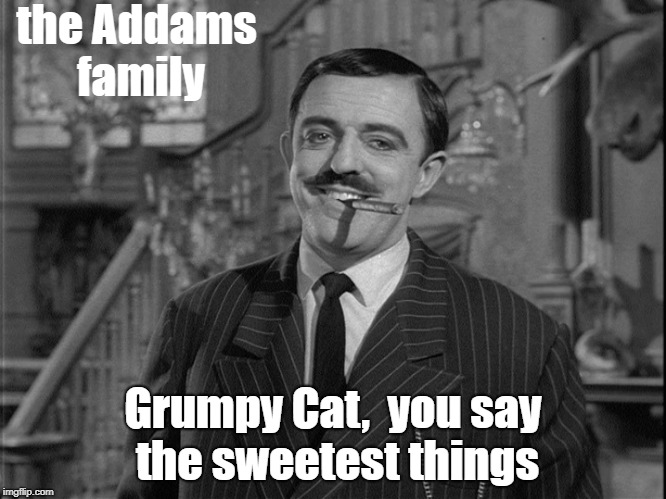 the Addams family Grumpy Cat,  you say the sweetest things | made w/ Imgflip meme maker