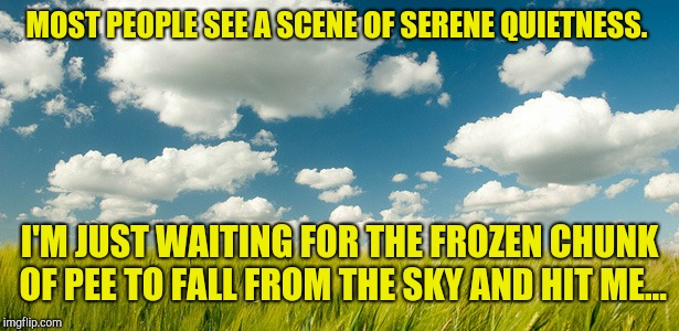 The difference in thoughts and hopes. .. | MOST PEOPLE SEE A SCENE OF SERENE QUIETNESS. I'M JUST WAITING FOR THE FROZEN CHUNK OF PEE TO FALL FROM THE SKY AND HIT ME... | image tagged in clouds  grass,karma's a bitch,disaster girl | made w/ Imgflip meme maker