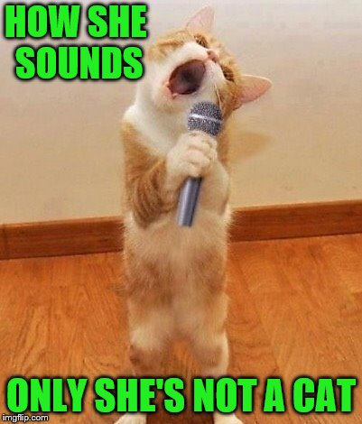 HOW SHE SOUNDS ONLY SHE'S NOT A CAT | made w/ Imgflip meme maker