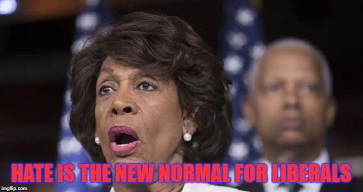 Ugly hateful pig | HATE IS THE NEW NORMAL FOR LIBERALS | image tagged in maxine waters | made w/ Imgflip meme maker
