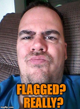Scowl | FLAGGED?  REALLY? | image tagged in scowl | made w/ Imgflip meme maker