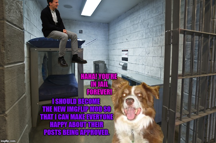 Imgflip mods should go to jail. | HAHA! YOU'RE IN JAIL FOREVER! I SHOULD BECOME THE NEW IMGFLIP MOD SO THAT I CAN MAKE EVERYONE HAPPY ABOUT THEIR POSTS BEING APPROVED. | image tagged in jail cell,chili the border collie,dogs,border collie,imgflip mods,imgflip trolls | made w/ Imgflip meme maker