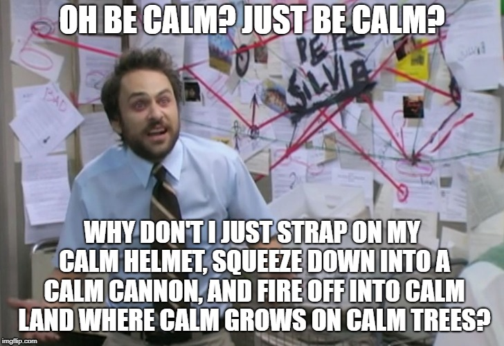 JUST BE CALM | OH BE CALM? JUST BE CALM? WHY DON'T I JUST STRAP ON MY CALM HELMET, SQUEEZE DOWN INTO A CALM CANNON, AND FIRE OFF INTO CALM LAND WHERE CALM  | image tagged in calm down,it's always sunny in philidelphia,memes,depression sadness hurt pain anxiety | made w/ Imgflip meme maker